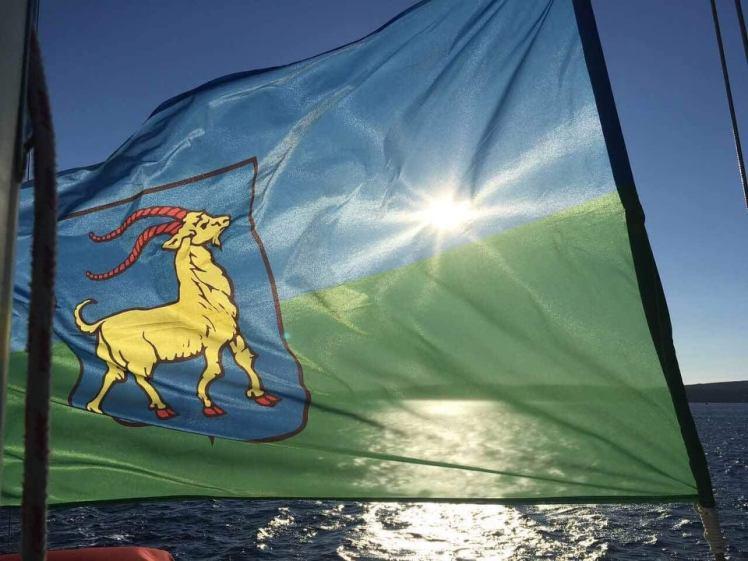 koza na zastavi